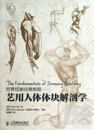 世界繪畫 教程——藝用人體體塊解剖學