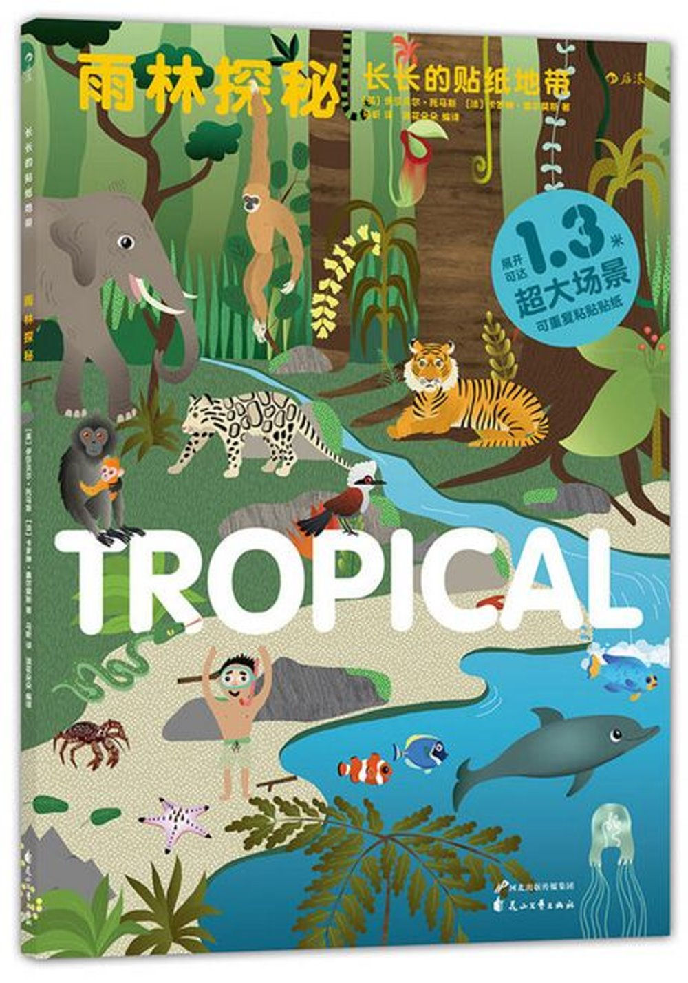 長長的貼紙地帶:雨林探秘