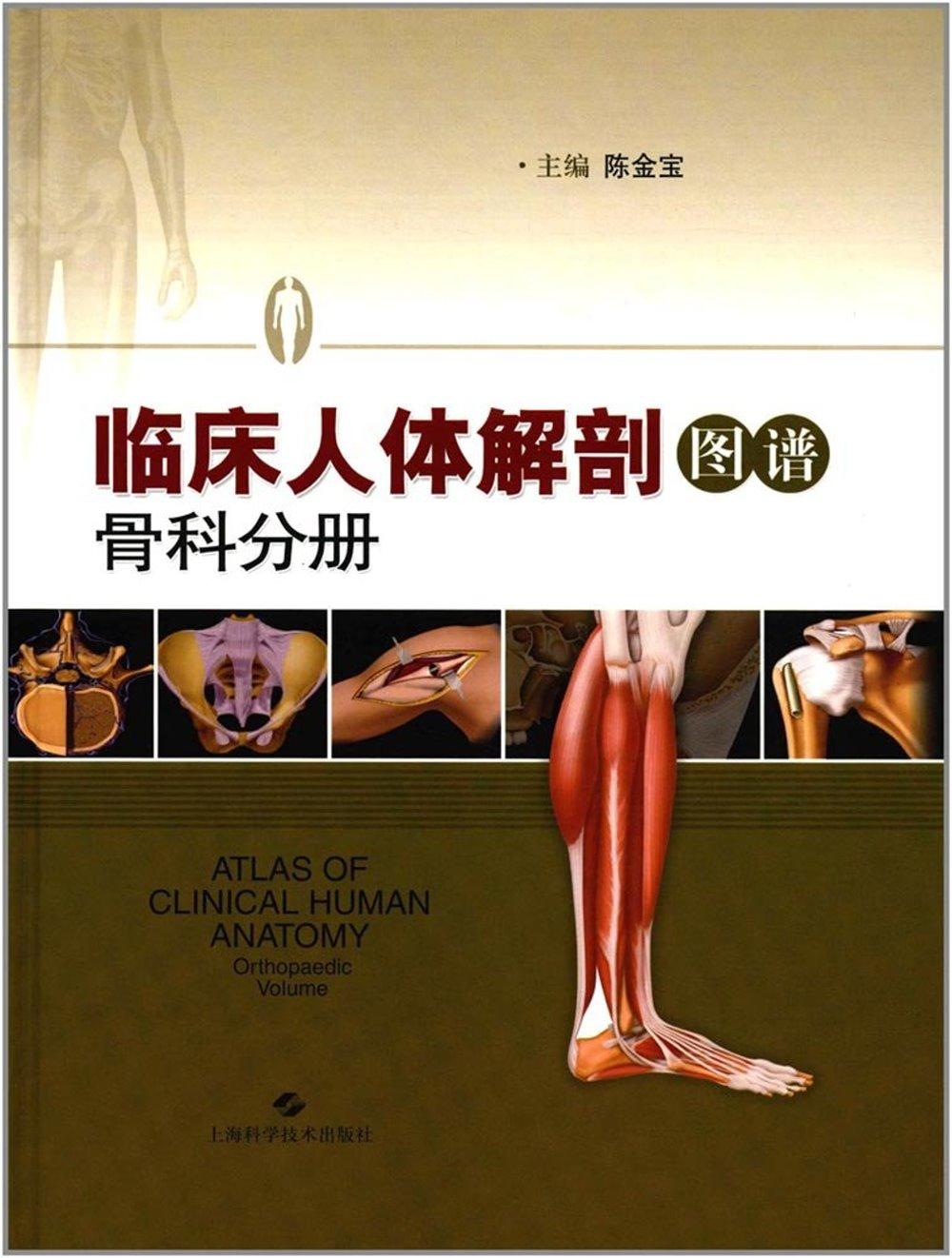 臨床人體解剖圖譜:骨科分冊
