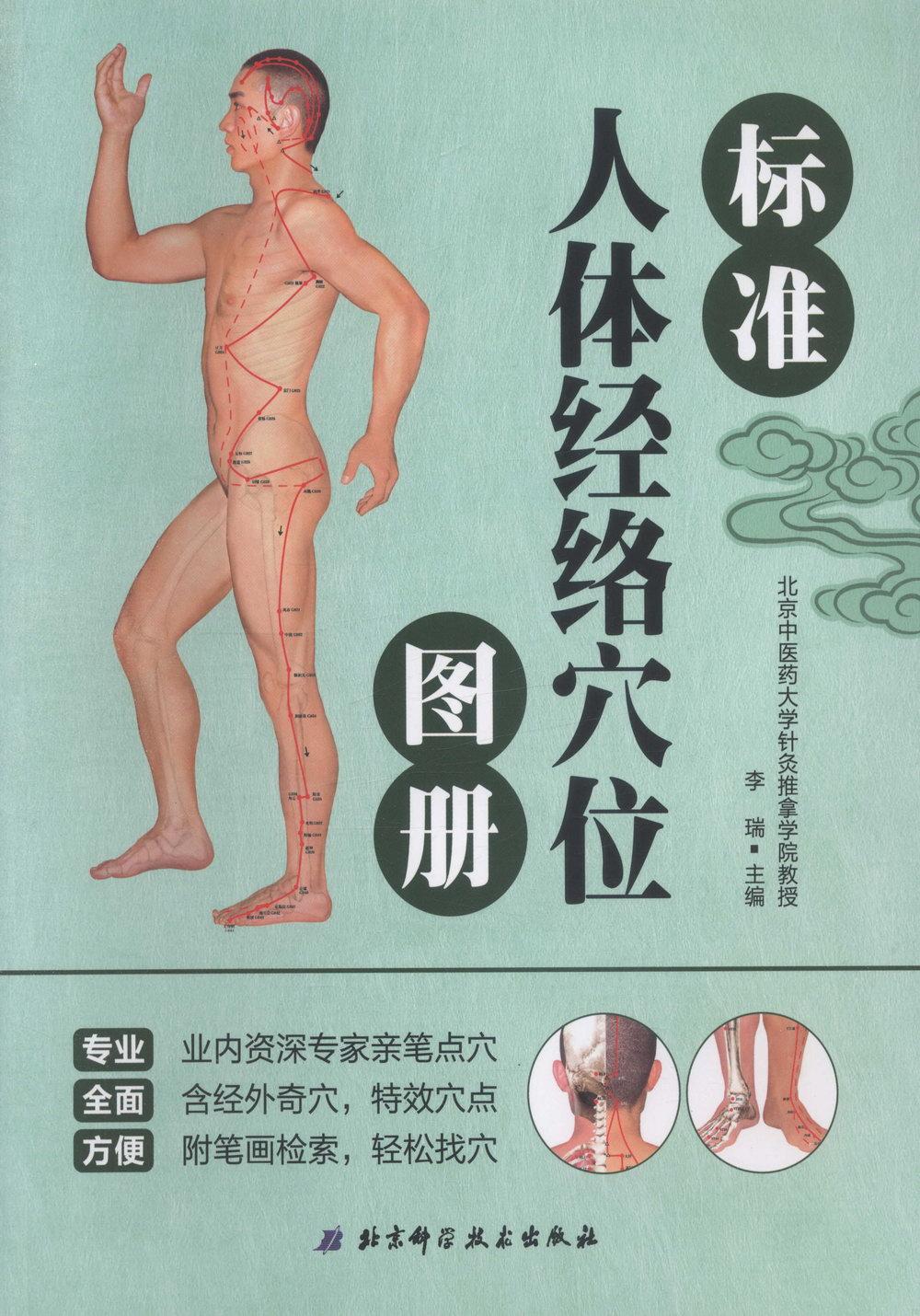標准人體經絡穴位圖冊