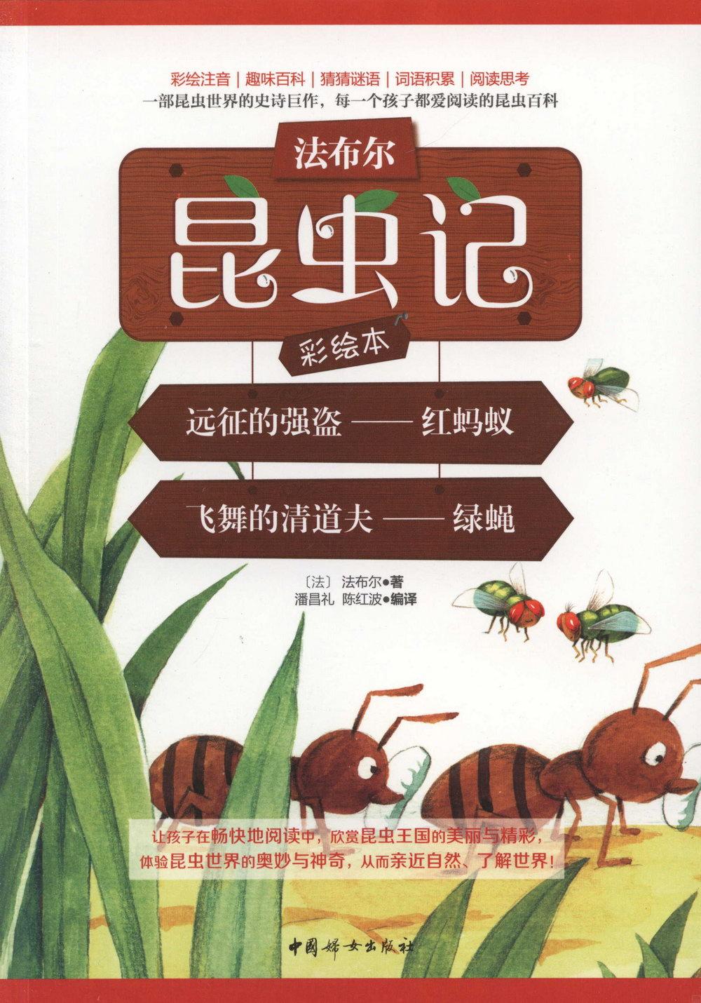 遠征的強盜--紅螞蟻 飛舞的清道夫--綠蠅