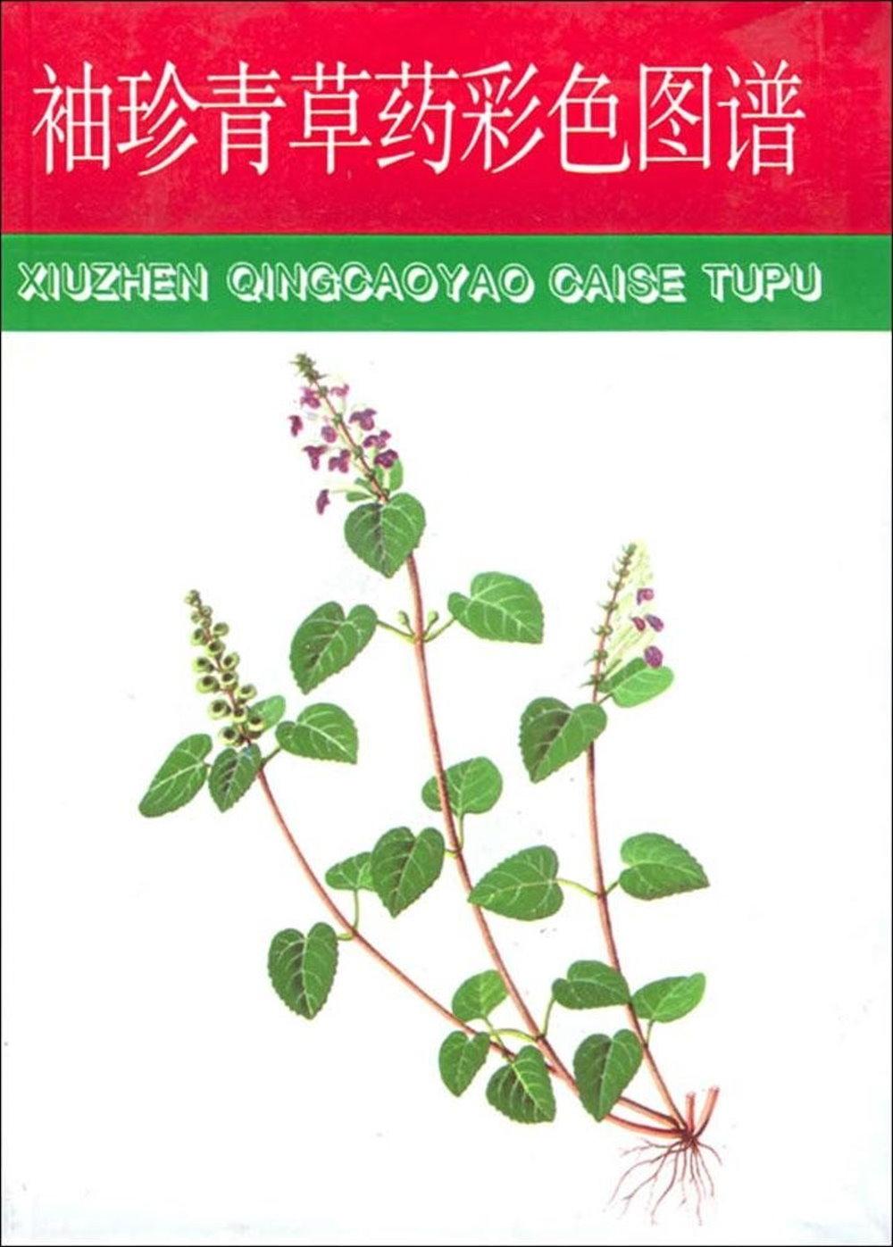 中草藥圖譜系列 袖珍青草藥彩色圖譜