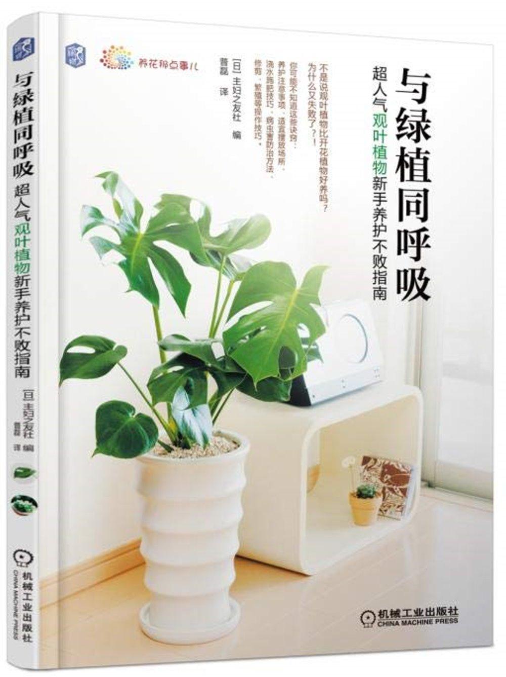 與綠植同呼吸:超人氣觀葉植物新手養護不敗指南
