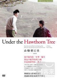 山楂樹之戀(家用版) Under The Hawthorn Tree /
