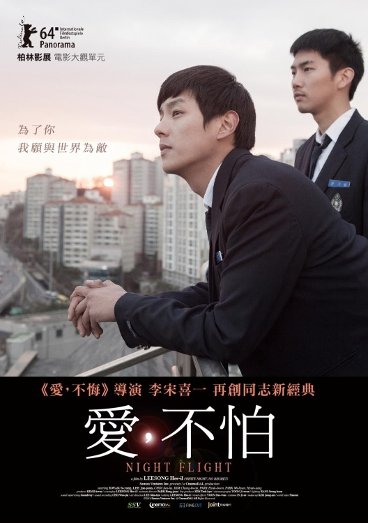 愛不怕 DVD(Night Flight)