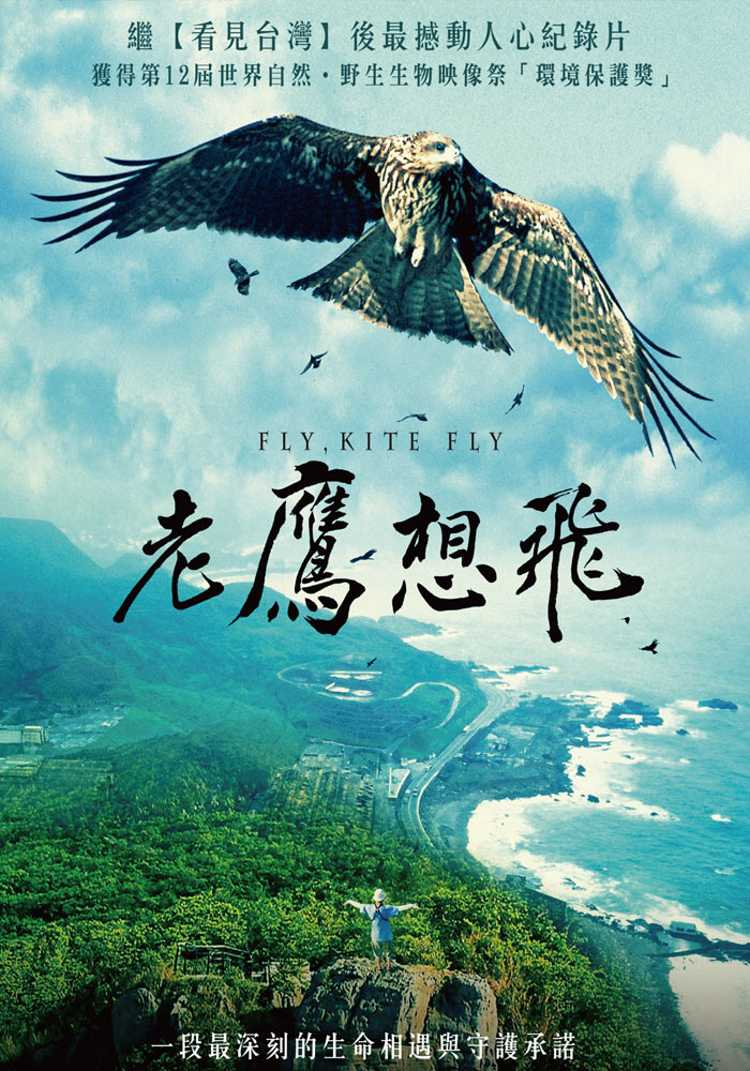 老鷹想飛 DVD(Fly, Kite Fly)