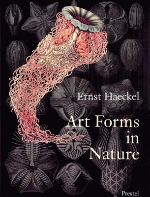 Art forms in nature :  the prints of Ernst Haeckel