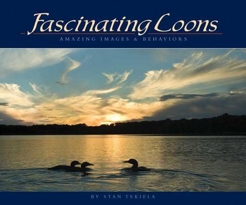 Fascinating Loons: Amazing Images & Behaviors