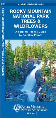 Rocky Mountain National Park Trees   Wildflow