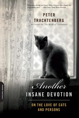 Another Insane Devotion: On the Love of Cats