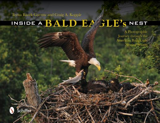 Inside a Bald Eagle's Nest: A Photographic Jo