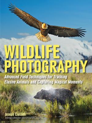 Wildlife Photography: Advanced Field Techniqu