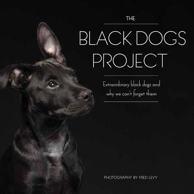 The Black Dogs Project: extraordinary black d