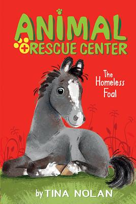 The Homeless Foal