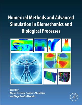 Numerical Methods and Advanced Simulation in Biomechanics and Biological Processes