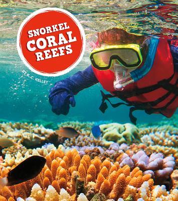 Snorkel Coral Reefs
