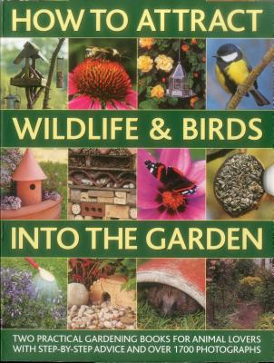 How to Attract Wildlife & Birds into the Garden: A Practical Gardener's Guide for Animal Lovers