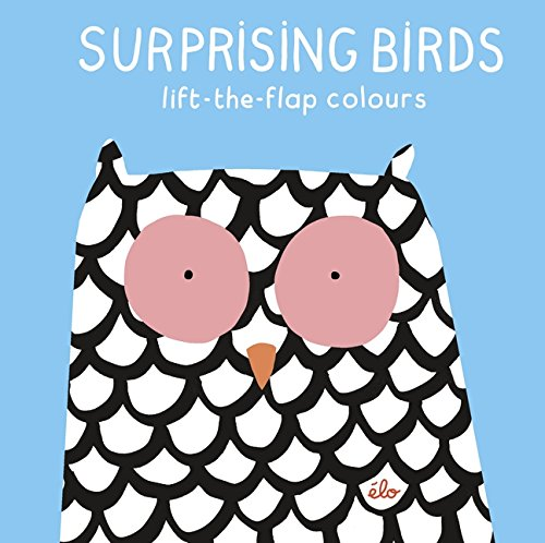 Surprising Birds: Lift-the-Flap Colours