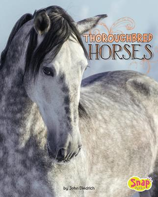 Thoroughbred Horses