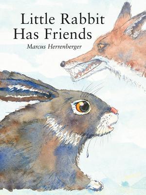 The Little Rabbit Has Friends