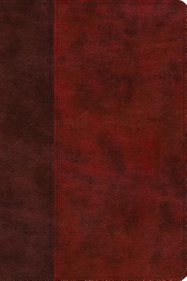ESV Story of Redemption Bible: English Standard Version, Burgundy/Red, TruTone, Timeless: A Journey Through the Unfolding Promis