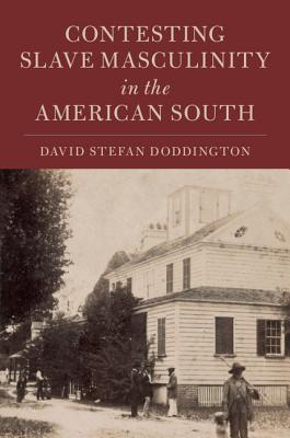Contesting Slave Masculinity in the American South