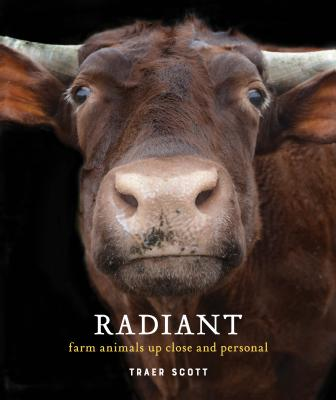 Radiant: Farm Animals Up Close and Personal