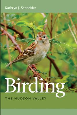 Birding the Hudson Valley