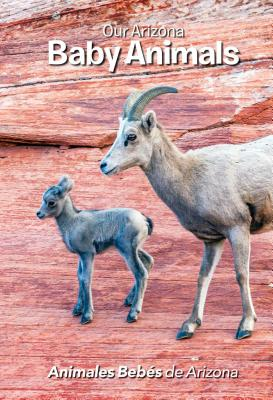 Our Arizona Baby Animals/ Animales Bebes de Arizona