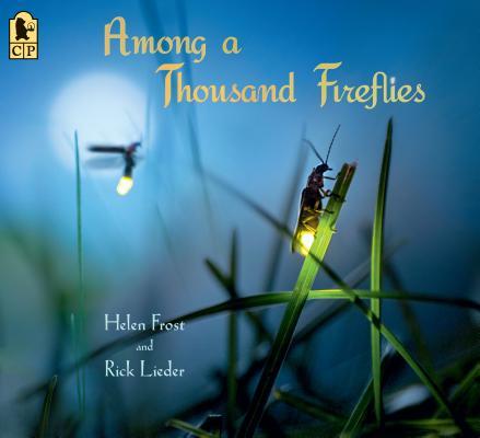 Among a Thousand Fireflies: Poems