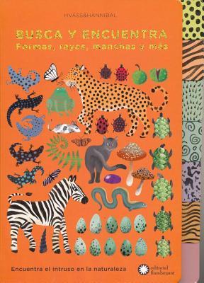 Busca y encuentra formas, rayas, manchas y más / Pattern-Tastic Treasure Hunt
