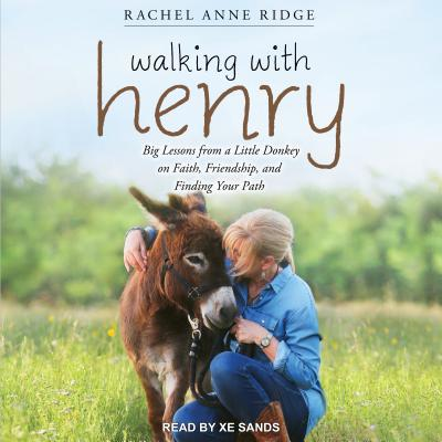 Walking With Henry: Big Lessons from a Little Donkey on Faith, Friendship, and Finding Your Path