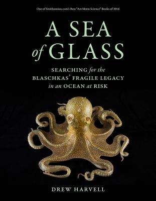 A Sea of Glass: Searching for the Blaschkas' Fragile Legacy in an Ocean at Risk