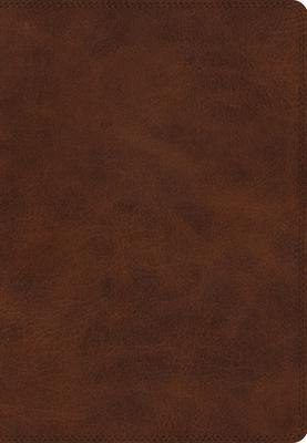 Holy Bible: English Standard Version, Deep Brown, TruTone, Giant Print