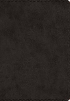 The Holy Bible: English Standard Version, Black, TroTone, Giant Print Bible