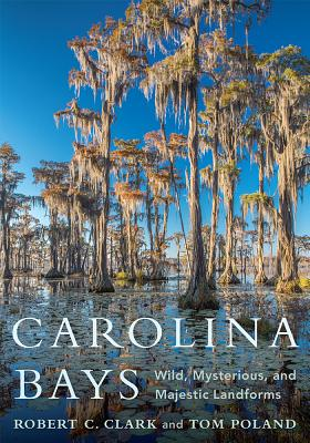 Carolina Bays: Wild, Mysterious, and Majestic Landforms