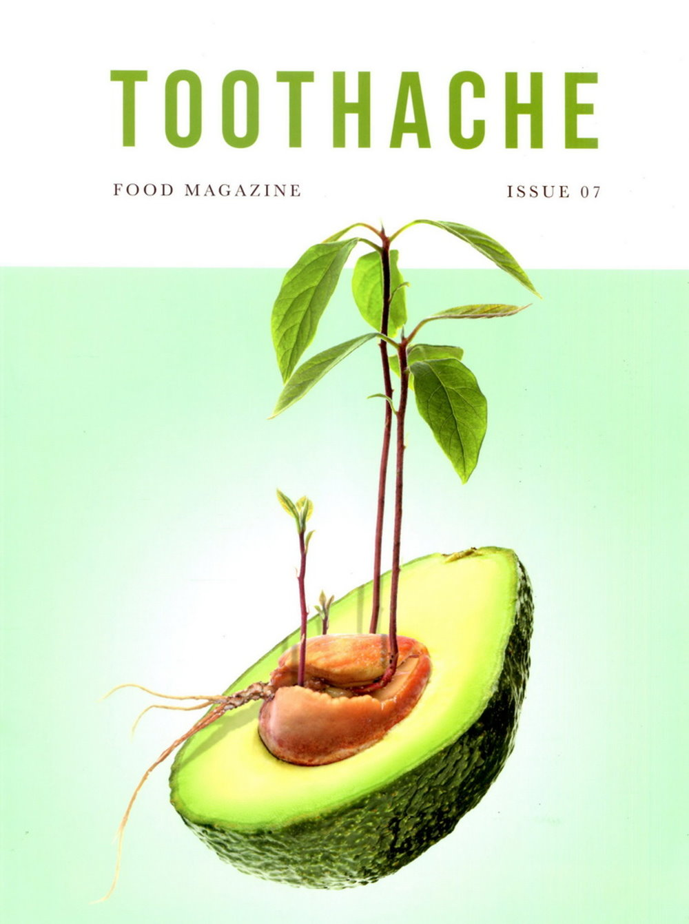 TOOTHACHE 第7期