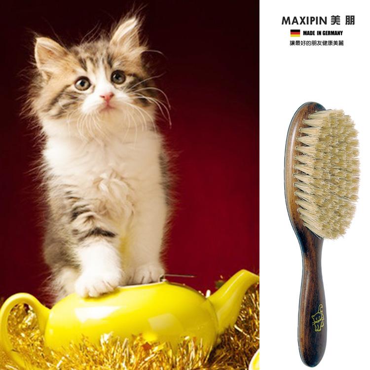 德國MAXIPIN美朋 德國製造 FSC 原木天然豚鬃貓咪刷/梳 貓咪毛皮健康亮麗