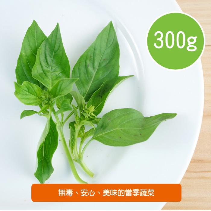 【陽光市集】陽光農業-九層塔(300g)