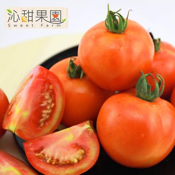 《沁甜果園SSN》牛番茄(5斤裝/箱)