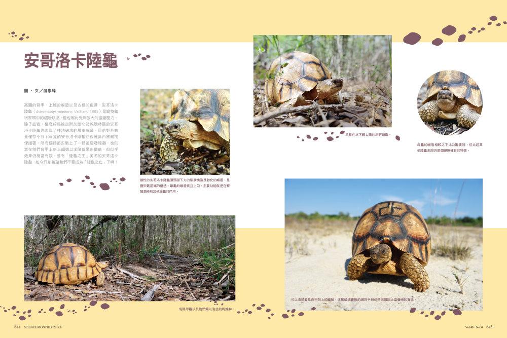 http://im2.book.com.tw/image/getImage?i=http://www.books.com.tw/img/R03/006/55/R030065551_b_01.jpg&v=59a3f0c6&w=655&h=609